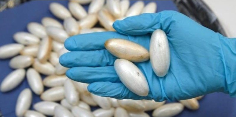 Tiba Di Kasablanka Dengan 131 Kapsul Kokain Di Dalam Perut, Wanita Ini Ditangkap